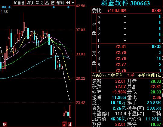 科蓝软件300663股票行情分析 盘中股价尾盘涨停